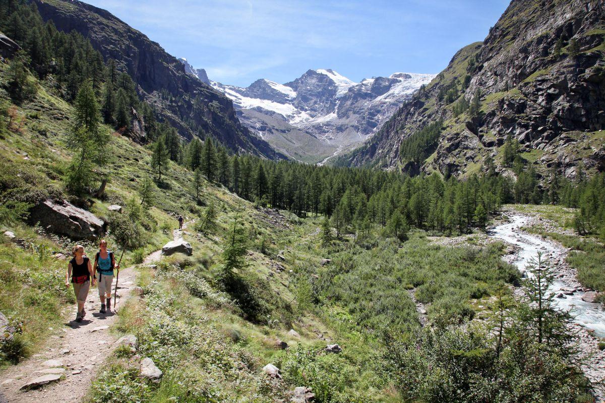 Parco Nazionale Gran Paradiso Cogne Valle D Aosta