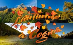 Fall in Cogne