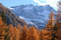 Autumn in Cogne - Aosta Valley