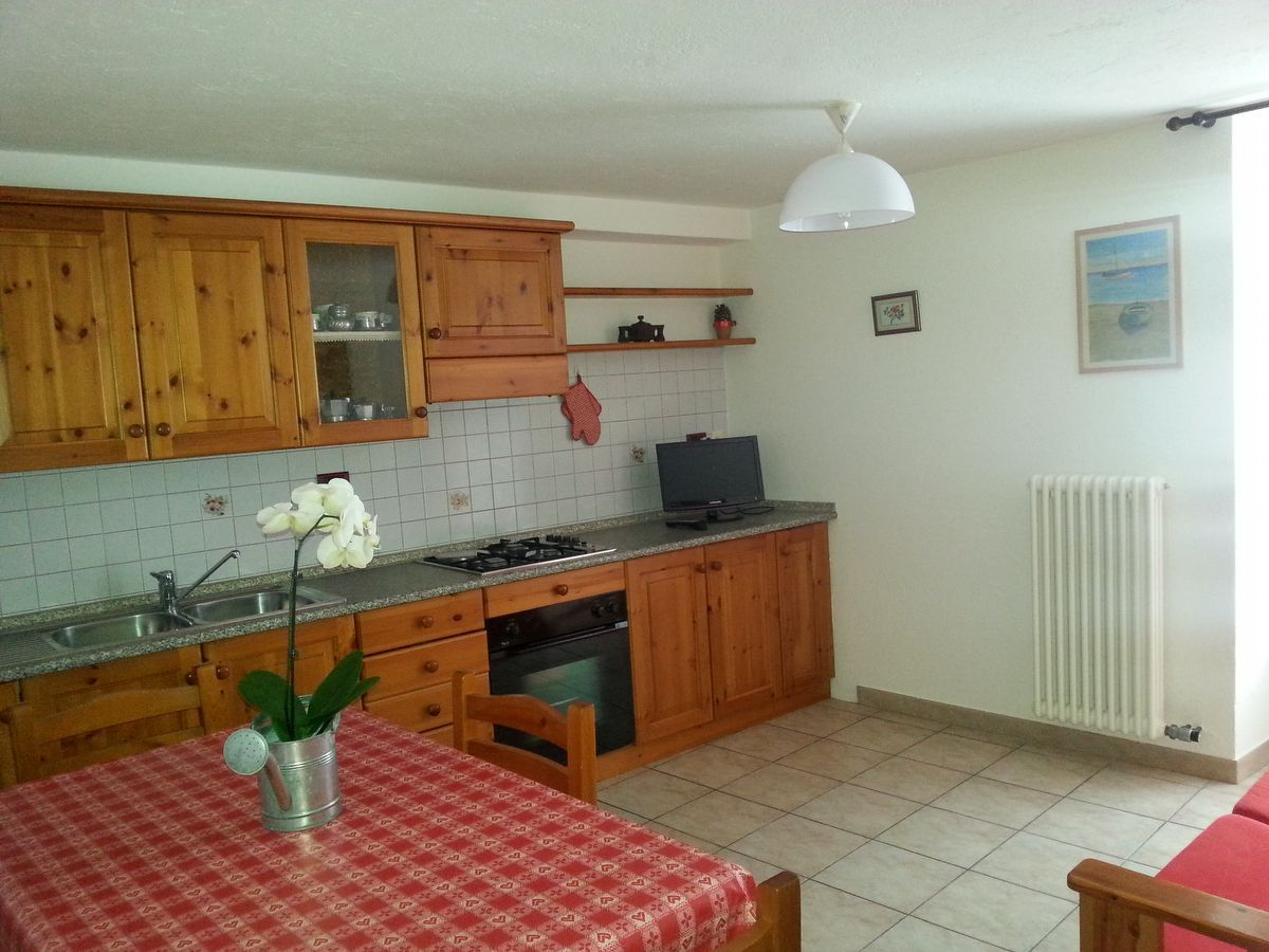 Kitchen of the apartment Begonia in Cogne