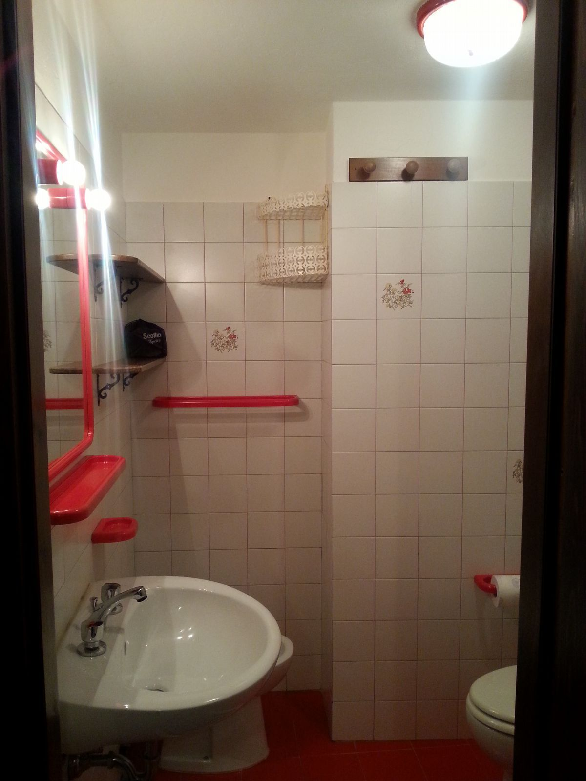 Bathroom of the apartment Begonia in Cogne