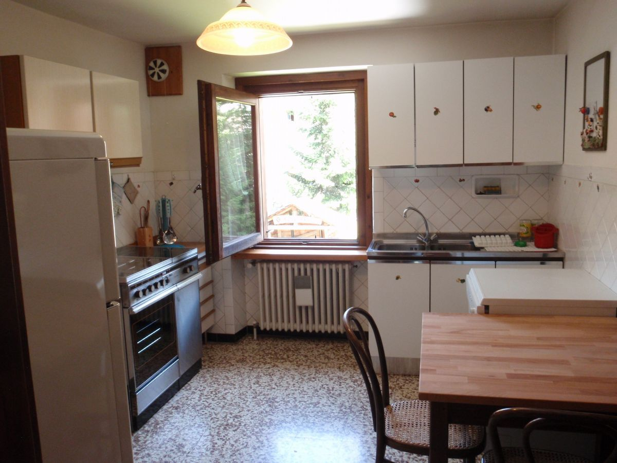 Kitchen in apartment Camelot in Cogne